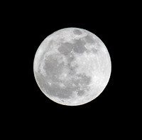 Full Moon 02-07-12 7:30 PM