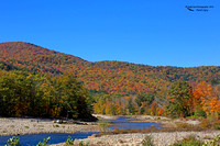 1019PS A section of the Pemigewasset River - North Woodstock, NH 10-14-16